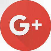 Google+'daki fotoğraf ve videolarınız da Albüm Arşivinizden ve Google+ sayfalarınızdan silinecek.