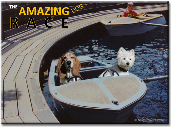 Two dogs in carnival boat ride