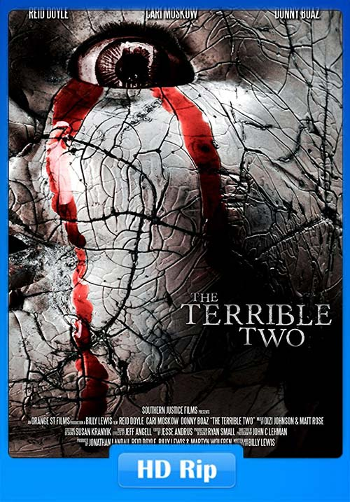 The Terrible Two 2018 720p WEB-DL | 250MB 480p | 100MB HEVC Poster