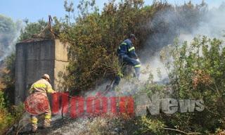 Ηλεία: Χτύπημα εμπρηστών στο Σμίλα