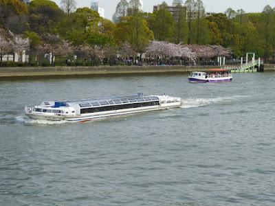 桜之宮公園の桜並木 お花見クルージング