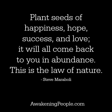 seeds, happiness, hope, success, love, abundance, law, nature,
