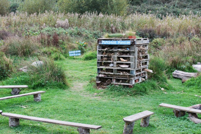 RSPB-Newport-Wetlands-Minibeas-Mansion-Logs-and-wood-made-into-a-frame