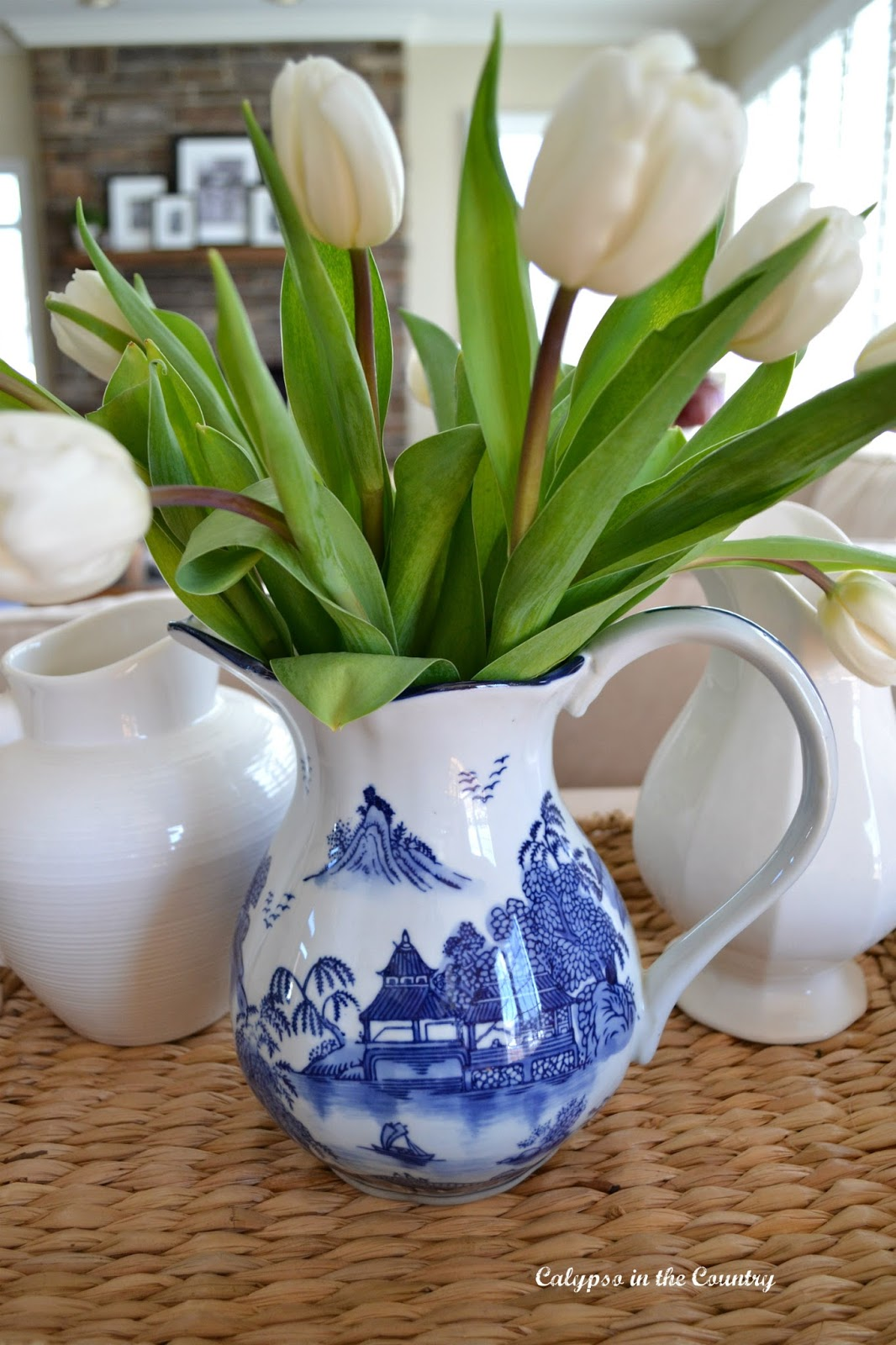 Tulips in blue and white pitcher