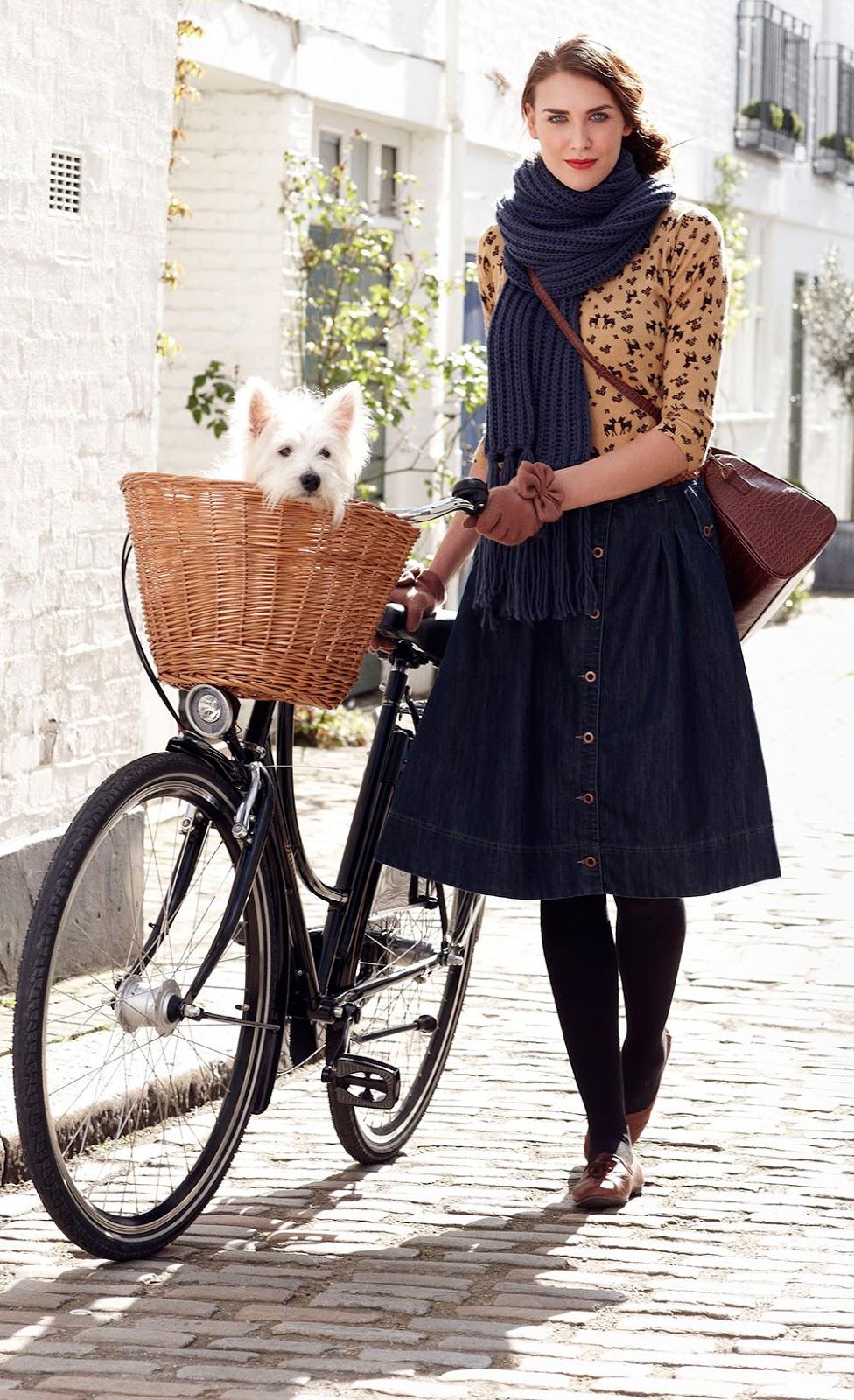 bicicletta stile retro