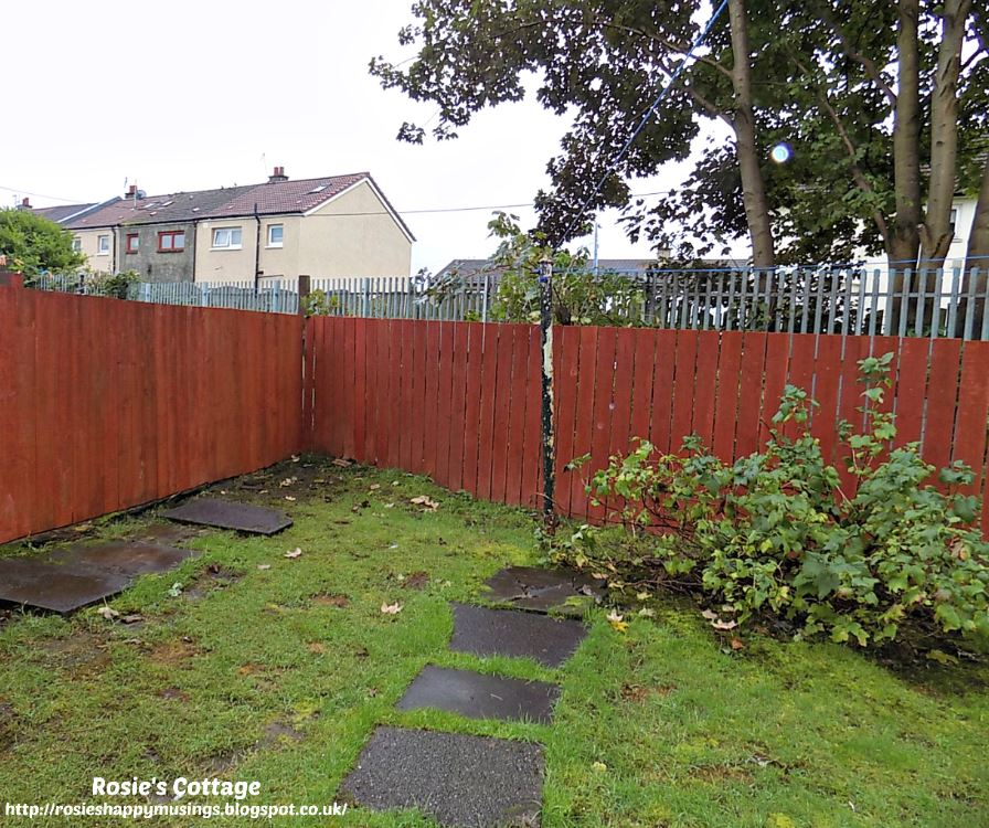 Newly Installed, Painted (and Two Feet Lower) Fence Around The Back Garden