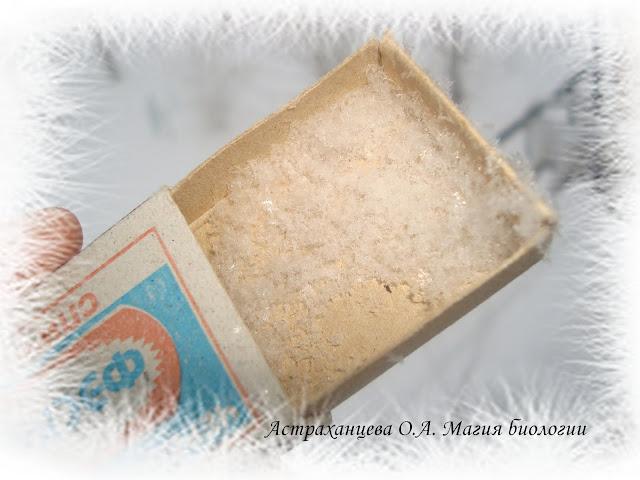 ohota-na-sneg-v-spichechnom-korobke