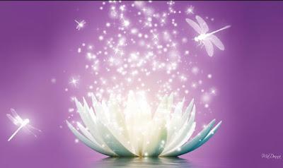 Lòng tốt cũng phải có trí tuệ, trao gửi sai người sẽ rước họa vào thân