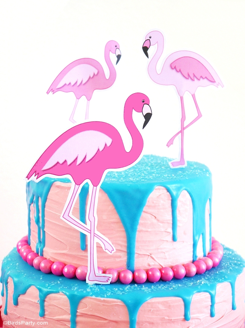 Recipe | How To Make a Flamingo Drip Cake - BirdsParty.com