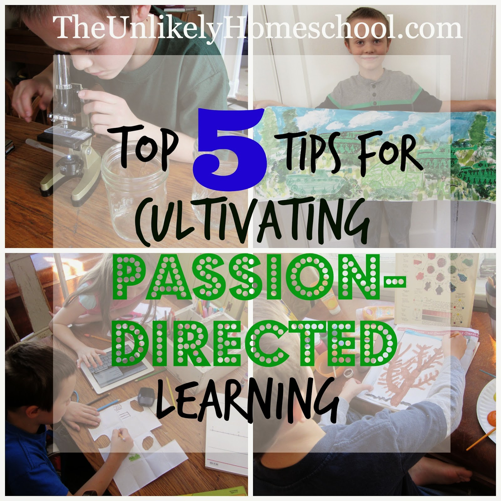 Top 5 Tips for Cultivating Passion-Directed Learning {The Unlikely Homeschool}
