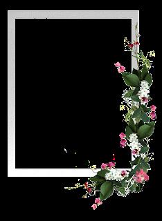 منتديات الأستاذ التعليمية التربوية المغربية فريق واحد لتعليم رائد عرض مشاركة واحدة إطارات وبطاقات فارغة لكتابة عبارات الإهداء