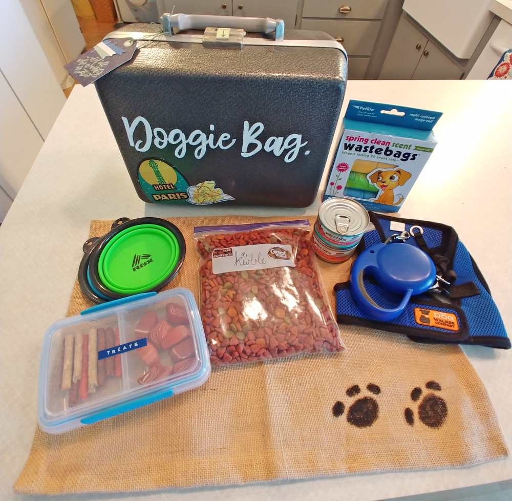 pet travel kit