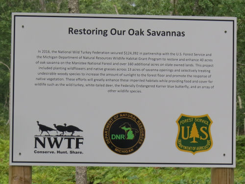 interpretive sign about oak savannas