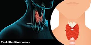 Tiroid Bezi Hormonları