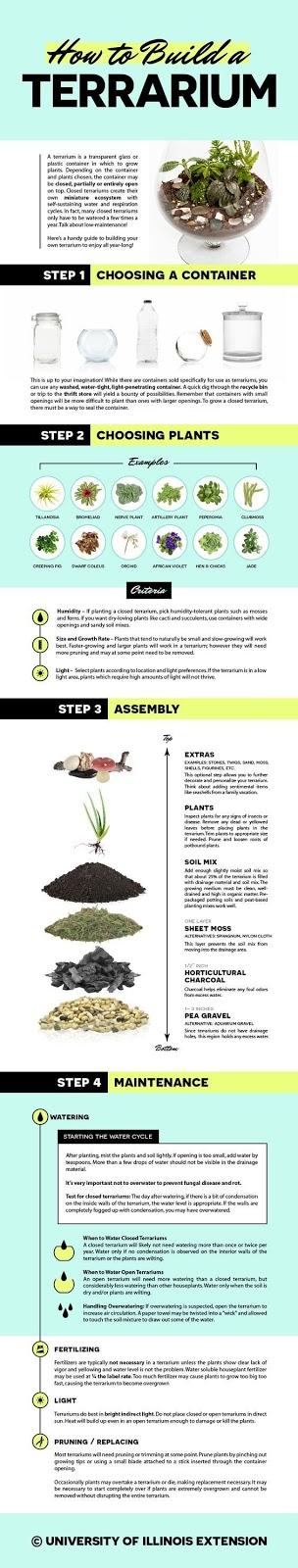 Cara Membuat Terarium Sendiri di Rumah - Infografis