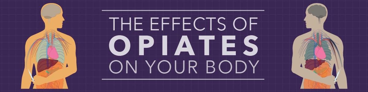 Side Effects Marine Phytoplankton