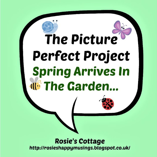 The Picture Perfect Project - Spring Arrives In The Garden