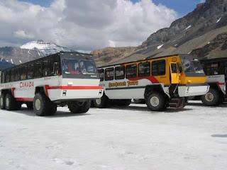 Ice Explorers.