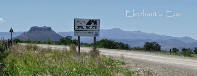 On the Owl Route to Nieu Bethesda and the Owl House