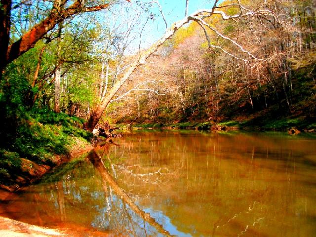 Callis Nature Preserve - Muscatatuck River