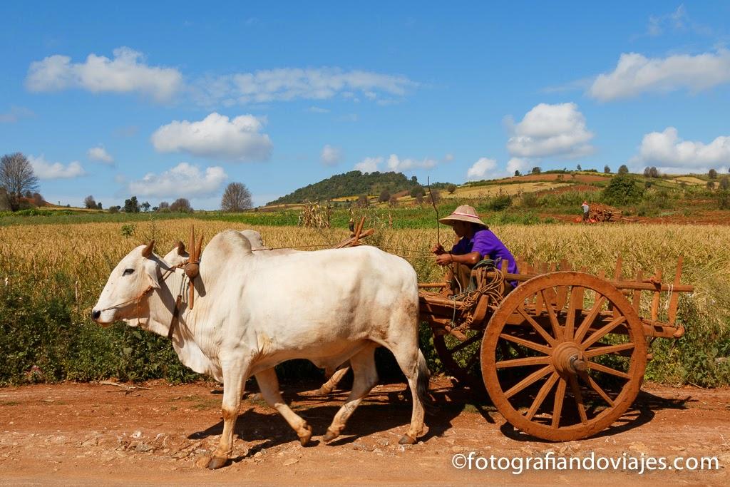 Camino a Pindaya