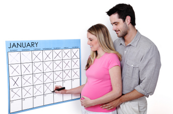 Pregnancy Calculator By Conception Date