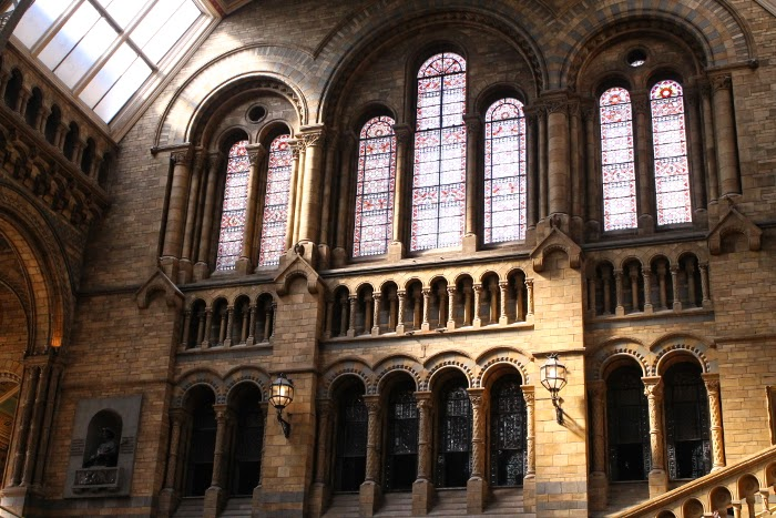 National History Museum // London // Lontoo // top things to do in London