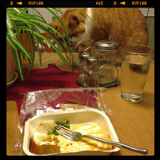 Chewy wants Amy's Veggie Loaf | East Meets West Veg