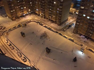 зима в Туле 2016