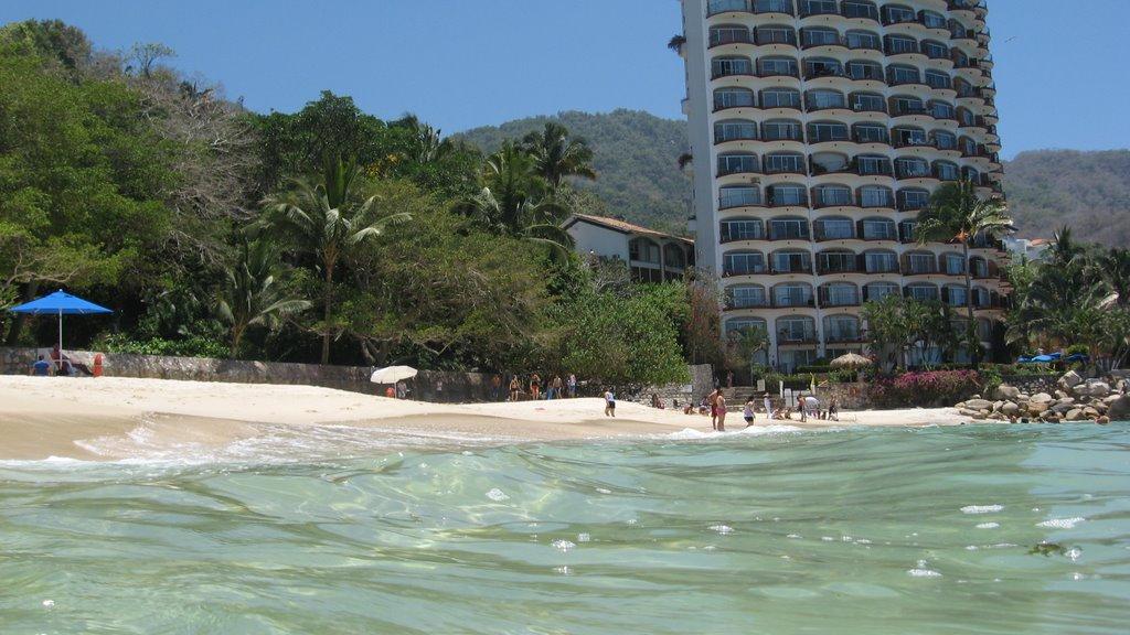 Playas gemelas y el Holi (Vallarta)