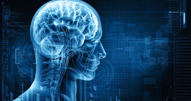 باحثون: الذكاء والنجاح يجعلك أكثر عرضة لسرطان الدماغ