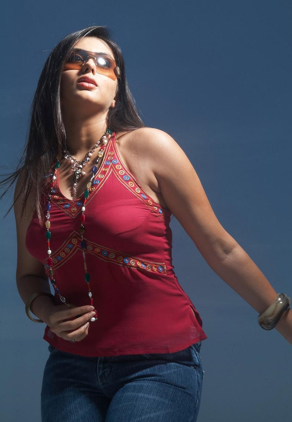 Namitha Hot Photoshoot  Hot Actress-2450