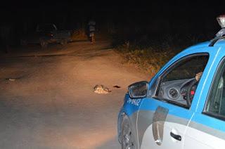 Agricultor sofre tentativa de homicídio em SFI Vítima foi baleada na cabeça numa estrada vicinal entre a Rua da Jaca e a RJ-224  http://vnoticia.com.br/noticia/2359-agricultor-sofre-tentativa-de-homicidio-em-sfi