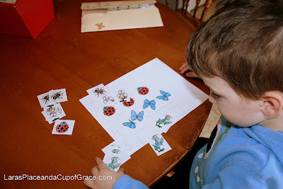 butterfly unit study, bug counters, toddler homeschool