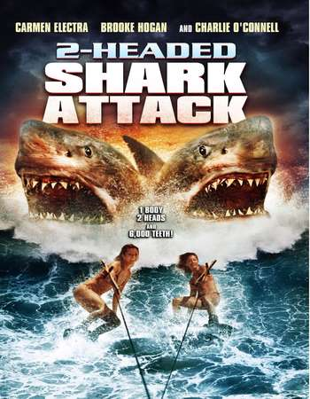 Poster Of 2-Headed Shark Attack 2012 Hindi Dubbed 300MB HDRip 576p Free Download Watch Online Worldfree4u