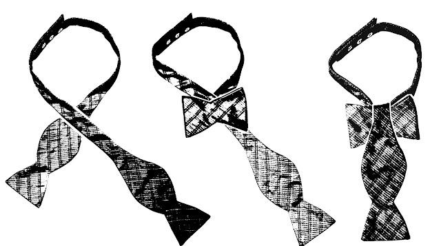 Ties by JJ Lee