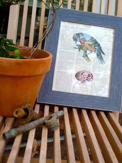 colorful-bird-print-on-dictionary-page-diy-directions