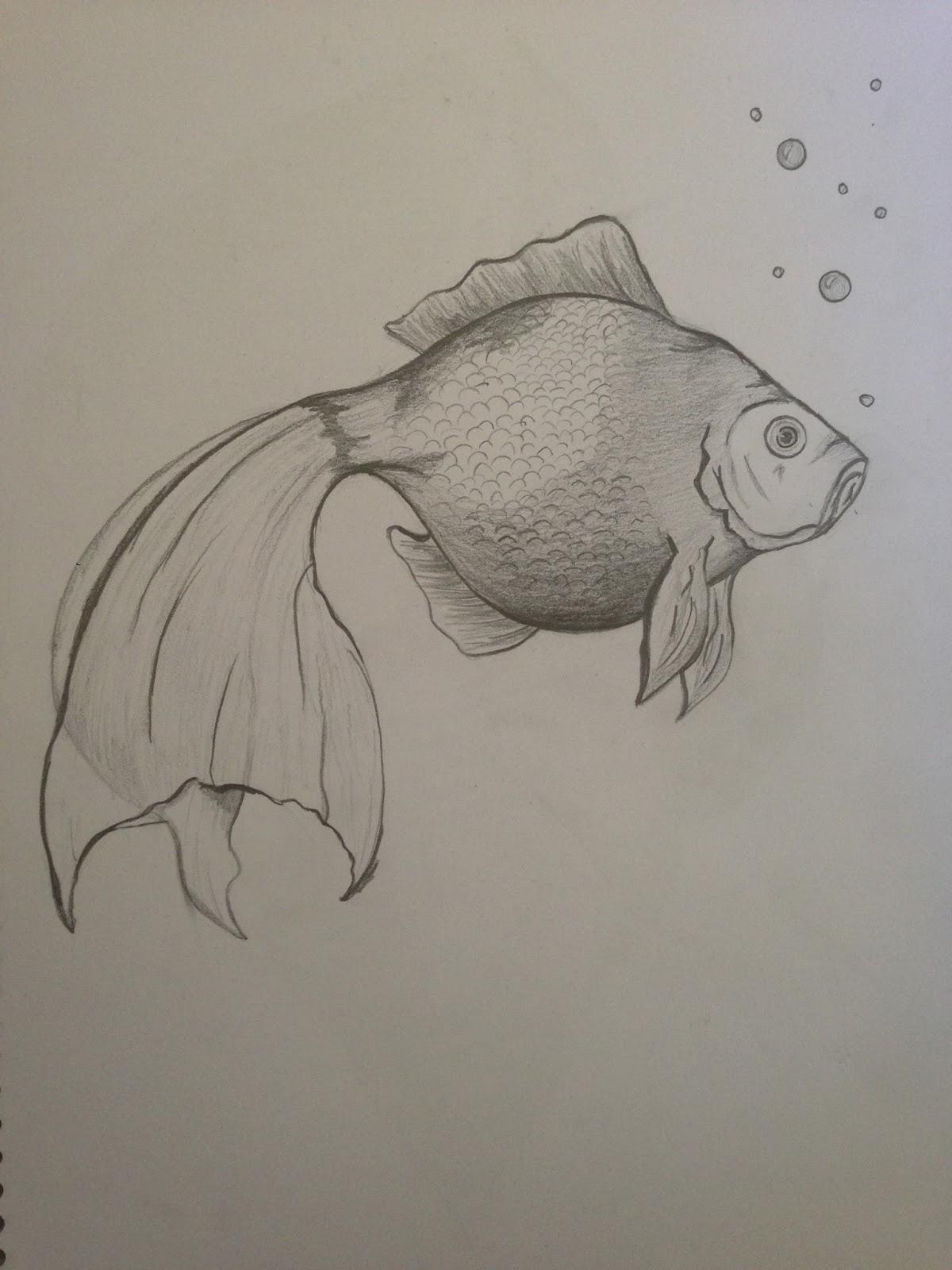 Arte Para Principiantes Dibujo En Lapiz - Dibujos-a-lapiz-para-principiantes