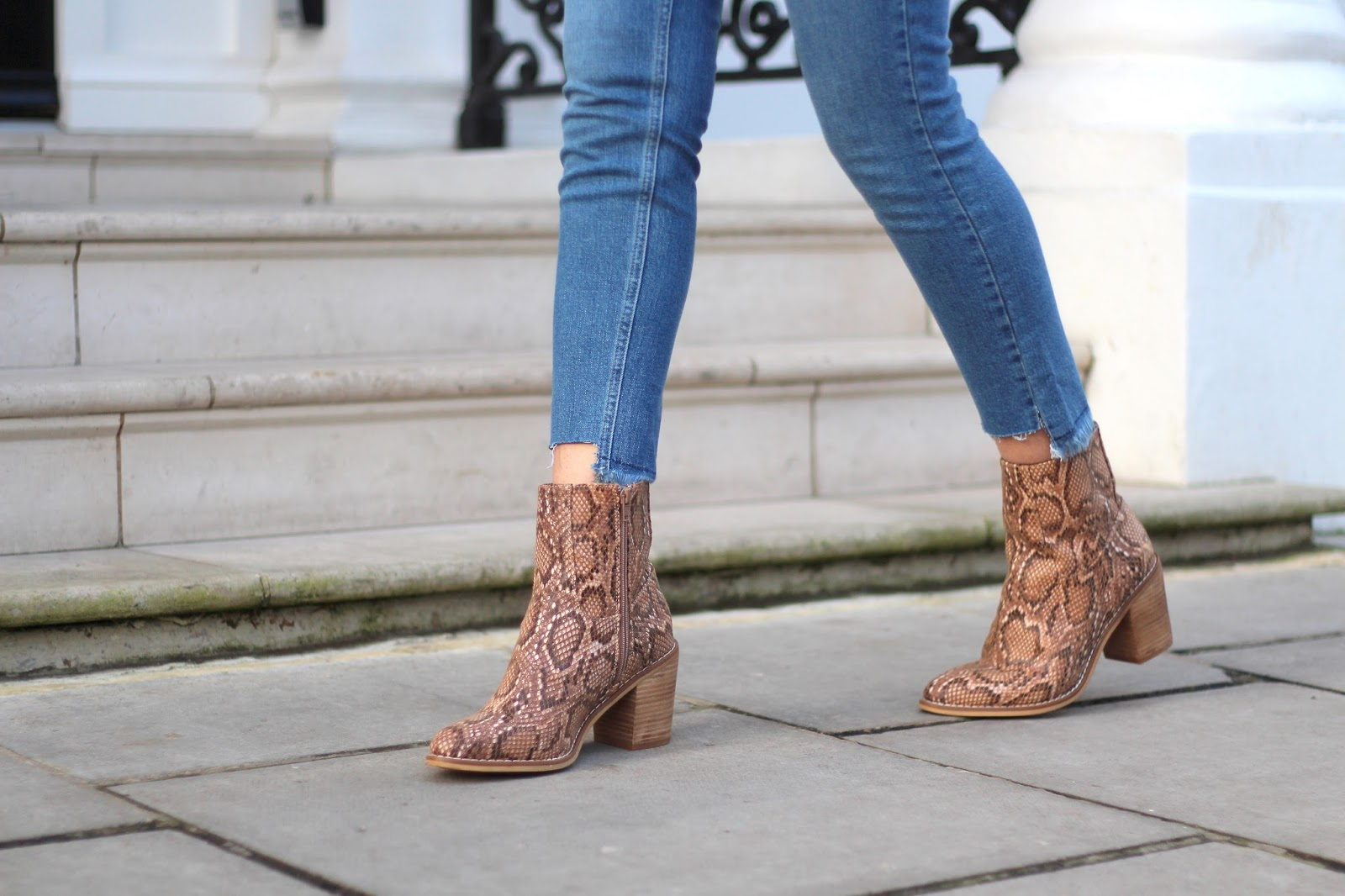 snake print ankle boots rocket dog