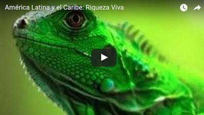 imagen América Latina y el Caribe: Riqueza Viva