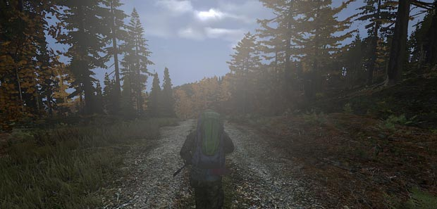 DayZ Hints, Tips & Tricks