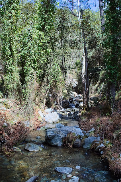 Part of the trail in Caledonian waterfalls at Mount Troodos, Cyprus. The trail is along the small river.