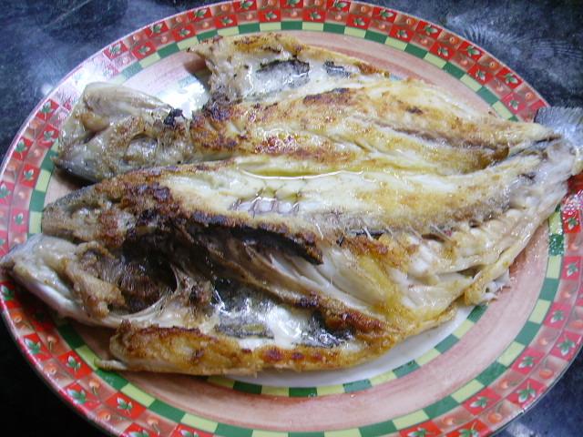 La licencia para la pesca italiya