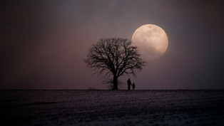 foto della luna in un paesaggio oscuro
