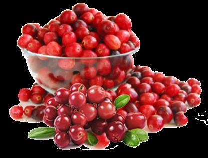 mengatasi anyang-anyangan dengan ekstrak cranberry