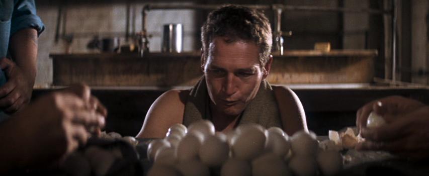 Image result for cool hand luke eggs