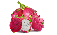 dragon fruit pictures