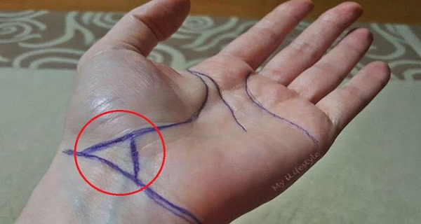 Triangle On The Bracelet Line Is A Sign. Do You Have One? This Is What It Means