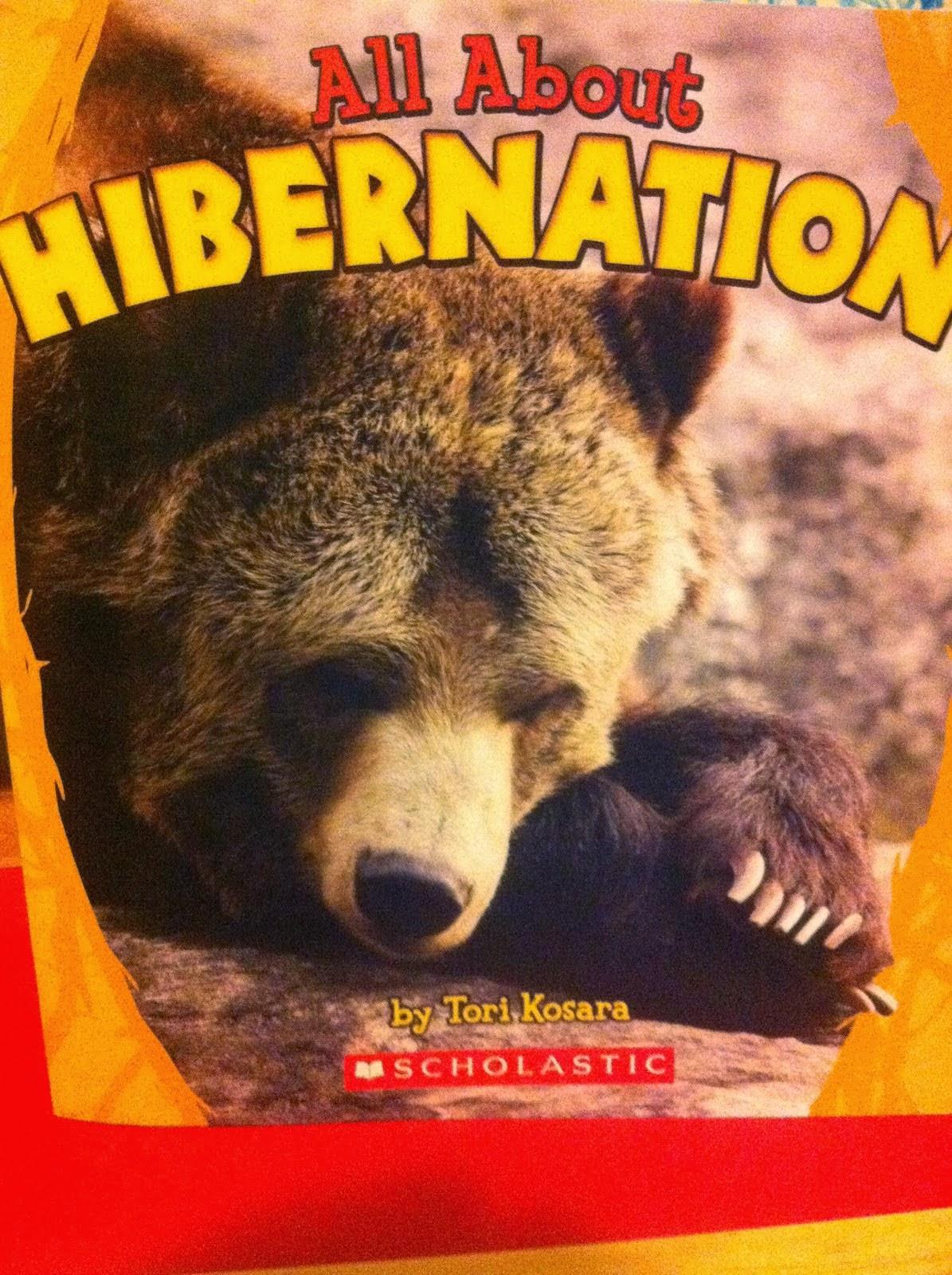 Chalk Talk A Kindergarten Blog Groundhogs Hibernation