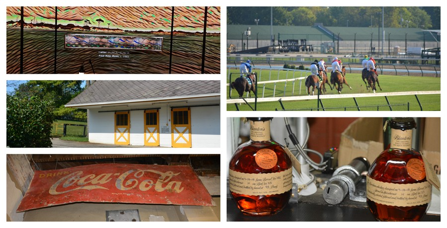 Bourbon et courses hippiques, Sud des Etats-Unis